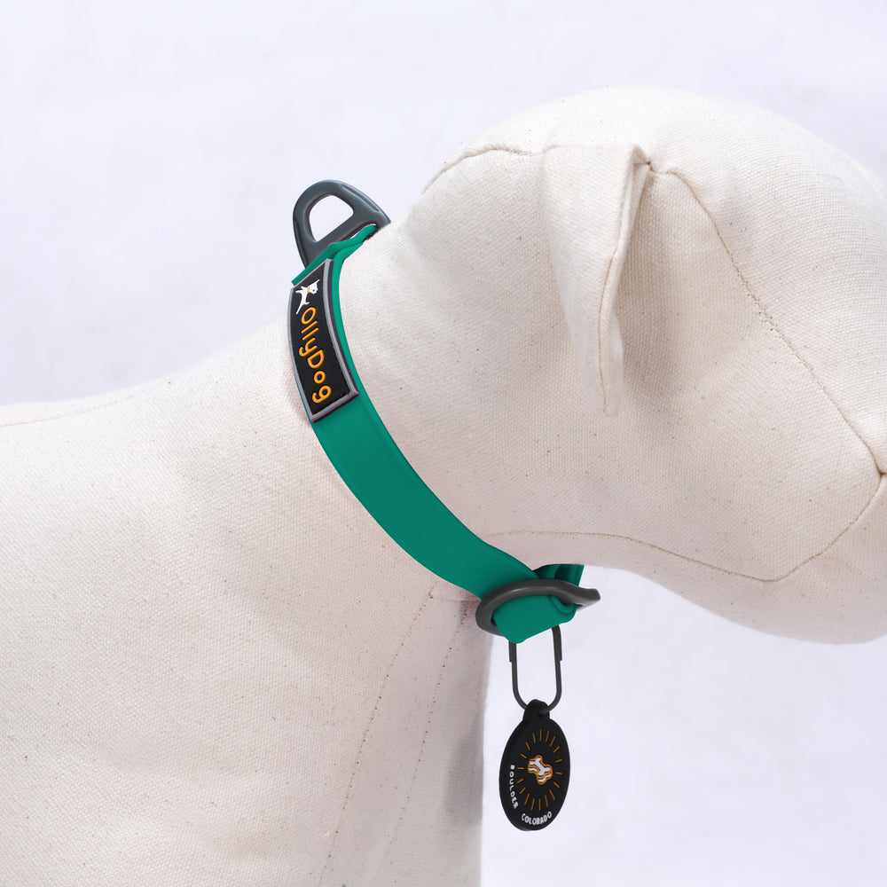 Tilden Waterproof Collar