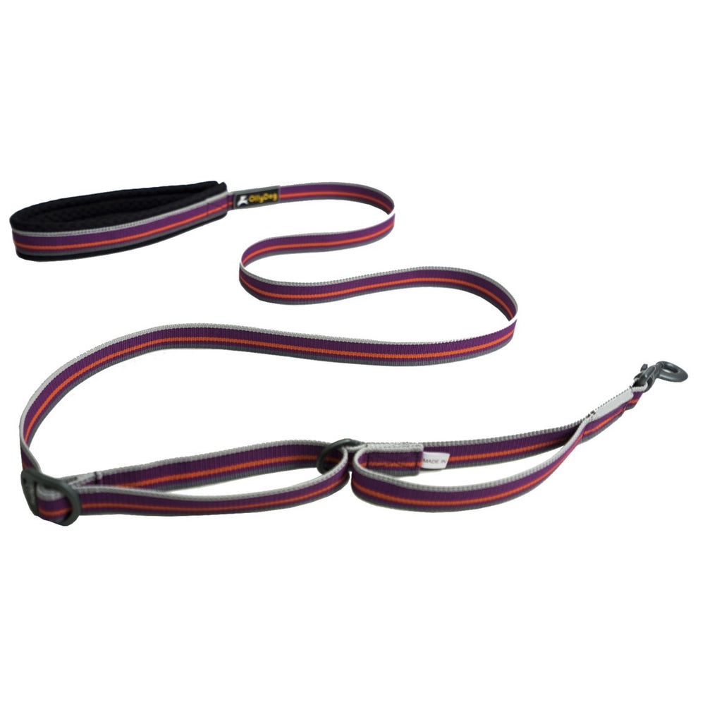 Urban Trail Reflective Leash