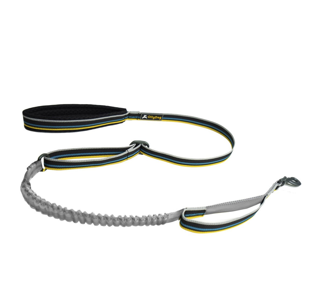 Urban Trail Reflective Spring Leash