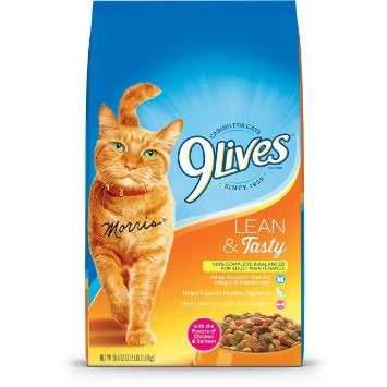 9 Lives Lean and Tasty Dry Cat Food