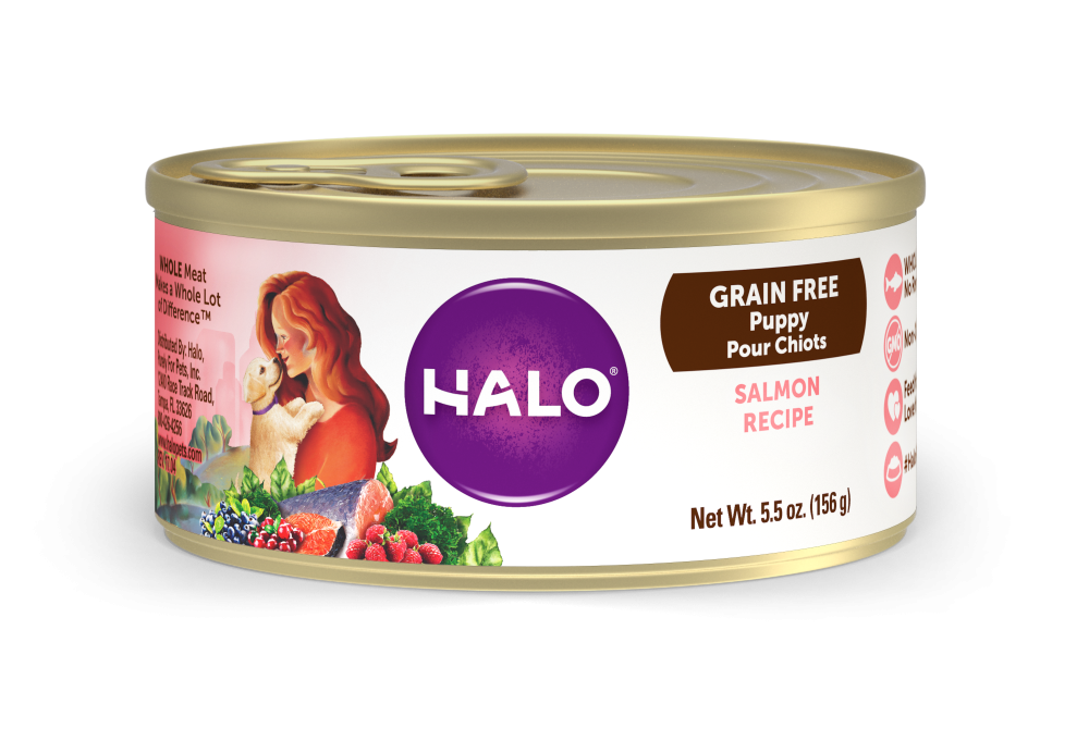 Halo Puppy Grain Free Salmon Recipe Canned Dog Food