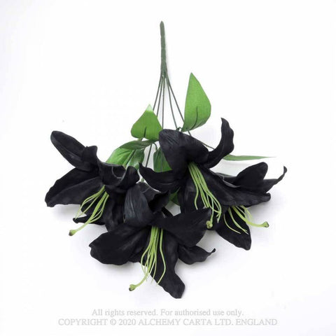 Black Lily Bunch