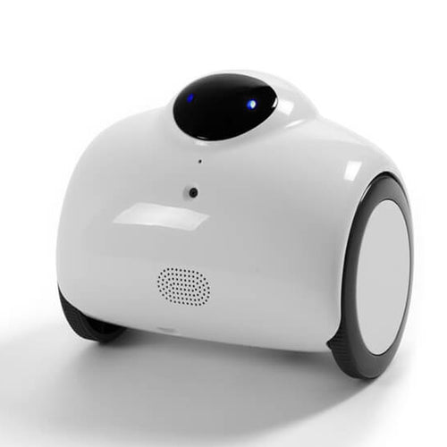 Robot Baby Monitor with Remote Control