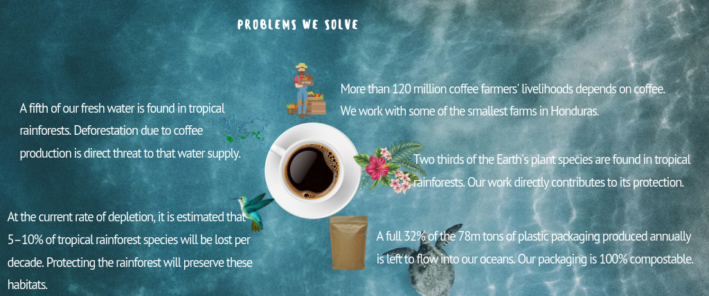 coffee-that-cares-about-the-conservation-of-the-rainforest