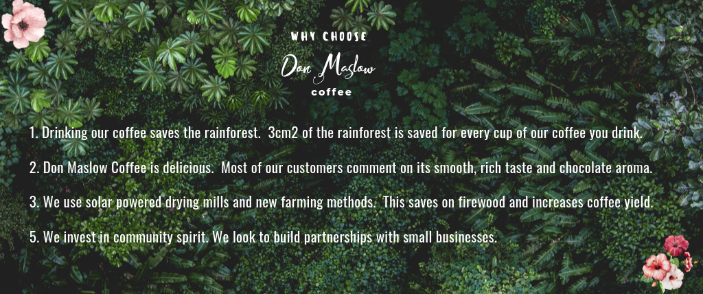 coffee-that-saves-the-rainforest
