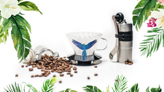 sustainablehondurancoffee