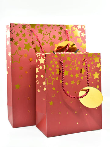 Dream Star Maroon Gold Foil Gift Bag