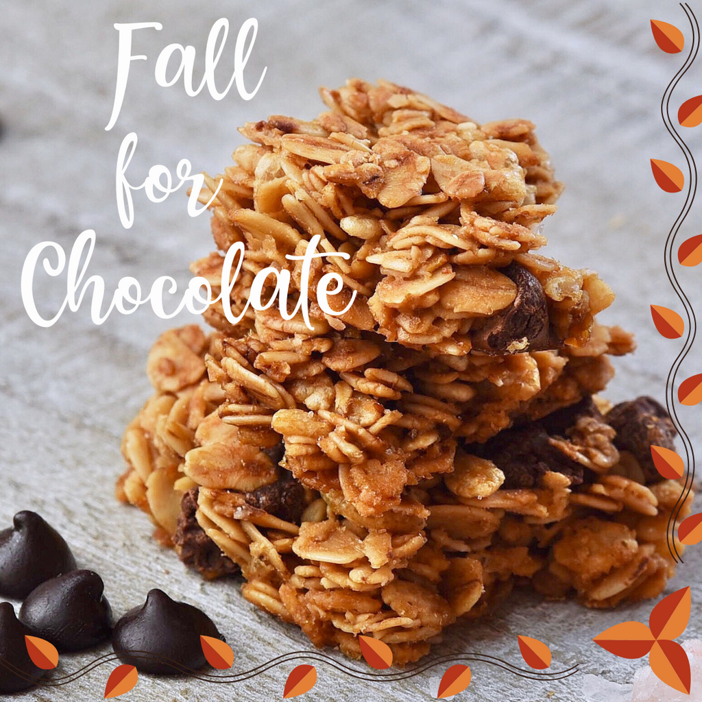 Fall for Chocolate Nosh ~ Seasonal Granola Clusters