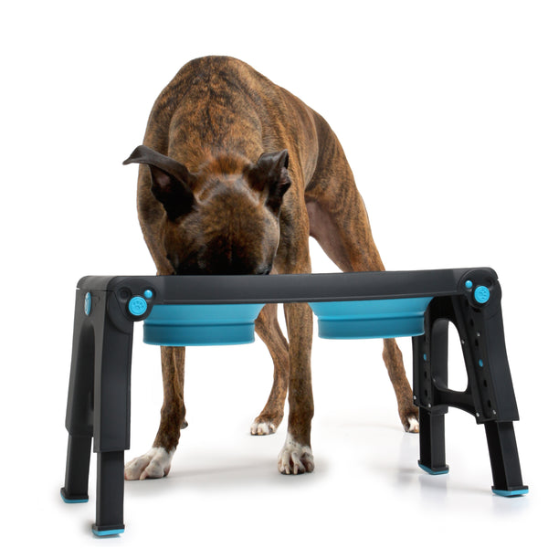 Adjustable Height Pet Feeder