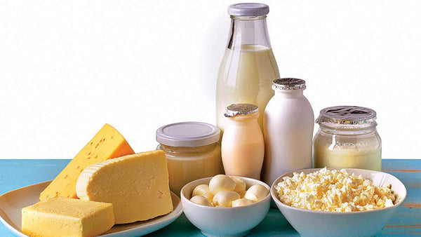 Understanding Cow's Milk Allergy