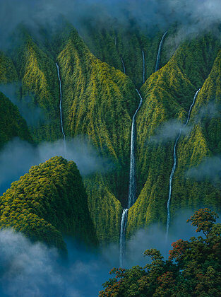 "Harry Wishard - ""Misty Falls II"""