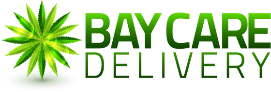 Bay Care Delivery