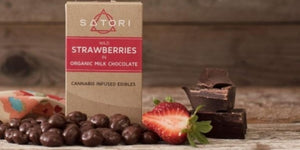 Wild Strawberries in Organic Milk Chocolate