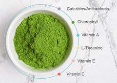 A bowl of nutraceutical matcha on a white surface, surrounded by bullet points highlighting a few nutrients including Vitamins A, C, E; L-Theanine; Catechins; Chlorophyll