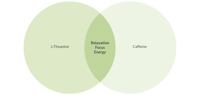 Informational graph showing the caffeine levels and effects behind matcha tea's benefits