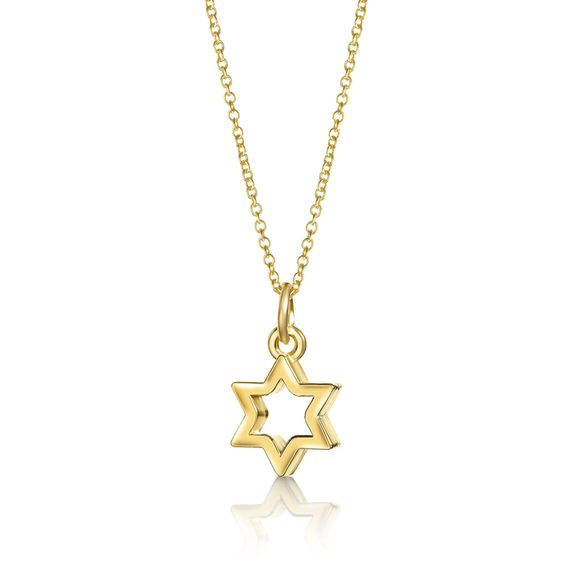Gold Star of David Necklace, Jewish Jewelry- Peace Love Light Shop