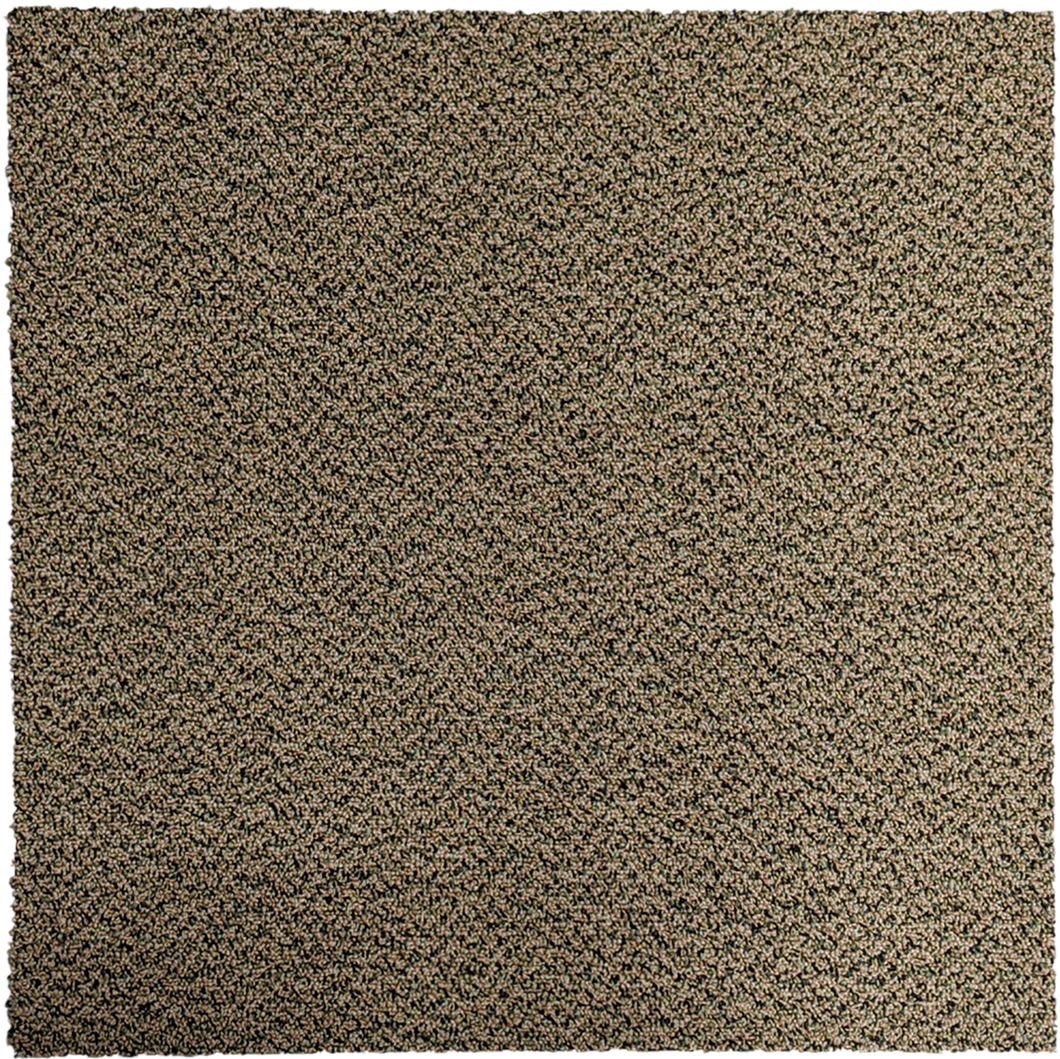 "Carpet Tile USA Shaw Lounge Lizard Carpet Tile-24""x 24""(12 Tiles/case, 48 sq. ft./case)"