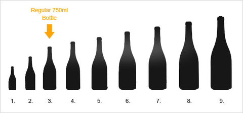 Different champagne bottle sizes (9)