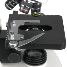 Stage, objectives, and light for the AmScope 40X-2000X 3W LED Siedentopf Trinocular Compound Microscope (SKU: T340B-LED-10M).