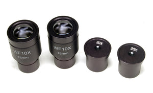 Eyepieces of the Levenhuk D670T 5.1M Digital Trinocular Microscope (SKU: 40029).