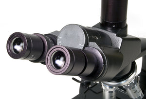 Eyepieces for the Levenhuk D670T 5.1M Digital Trinocular Microscope (SKU: 40029).