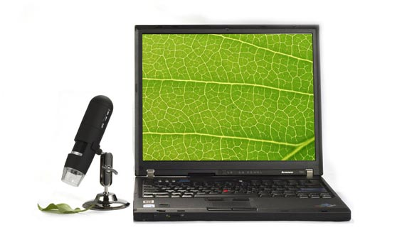 Levenhuk DTX 30 Digital Microscope (SKU: 61020) examining a leaf and transmitting the image to a PC via a USB cord.