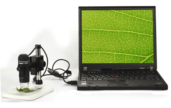 Levenhuk DTX 90 Digital Microscope (SKU: 61022) connected by USB to a laptop computer.