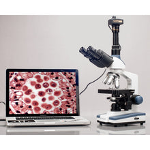 AmScope 40X-2500X LED Lab Trinocular Compound Microscope w 3D Two-Layer Mechanical Stage & HD Recording Camera (SKU: T120C-HC2) transmitting an image to a laptop computer.