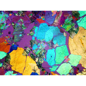 Minerals under a polarizing microscope.