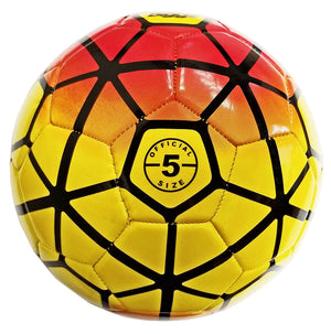 (Pack of 50) Biggz Premium Soccer Balls Durable Size 5 - Bulk Balls