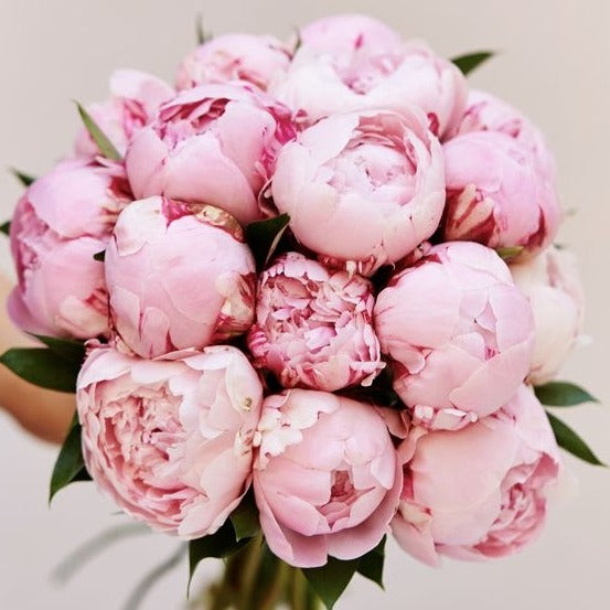 Mother's Day Peony Bouquet