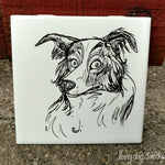Border Collie Coaster