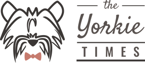The Yorkie Times Shop