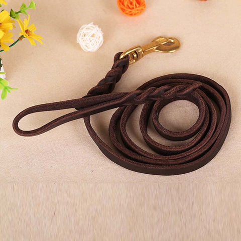 Long Leash Braided Dog Walking Training Leads with Heavy Duty Cooper Hook