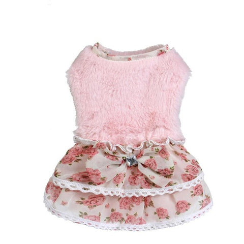 Dancing Queen Small Dog Dress