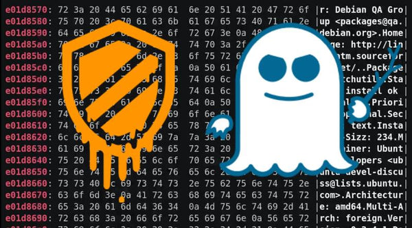 "Protecting Yourself From Spectre, Meltdown and other Speculative Execution (""SPEX"") Vulnerabilities"