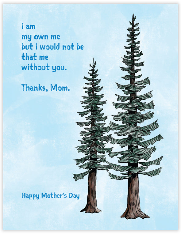 Mother's Day Conifers