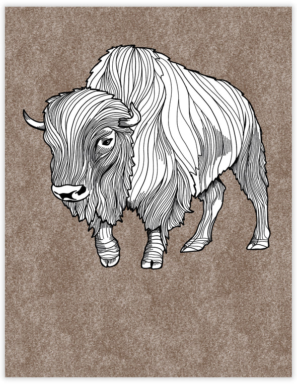 Bison Everyday Note Card