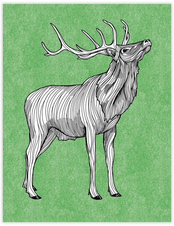 Elk Everyday Note Card