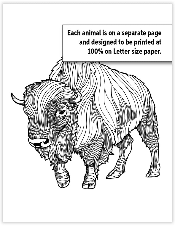 Download and Print Wildlife Coloring Pages - North American Mammals