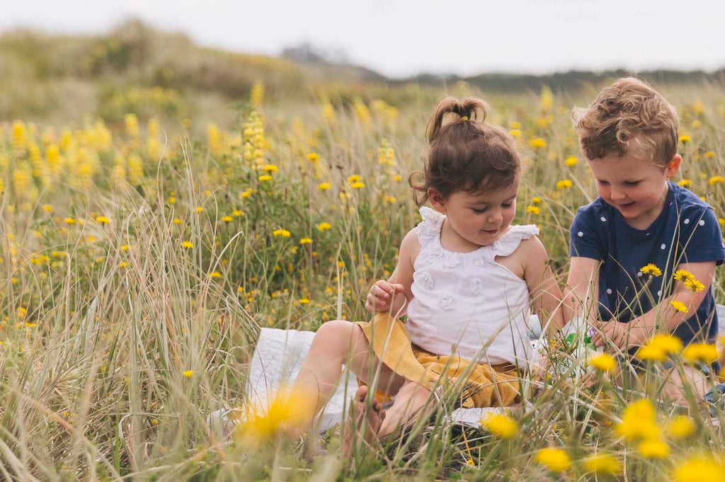 Fun Picnic Ideas For Summer