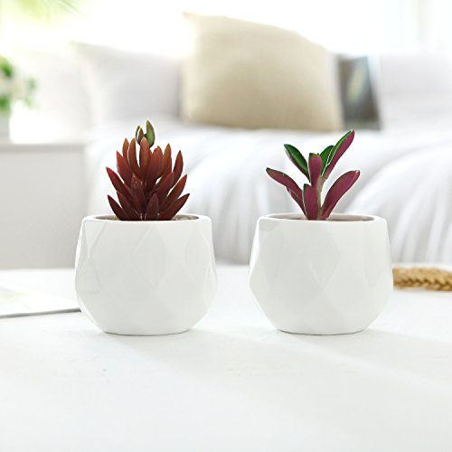 Small 4 Inch White Ceramic Faceted Succulent Planters, Geometric Mini Cactus Pots, Set of 2