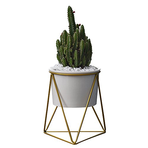 Planter Pots Indoor Modern Garden White Ceramic Round Bowl with Metal Air Plant Stand for Succulent Planter Cactus (White + Gold)