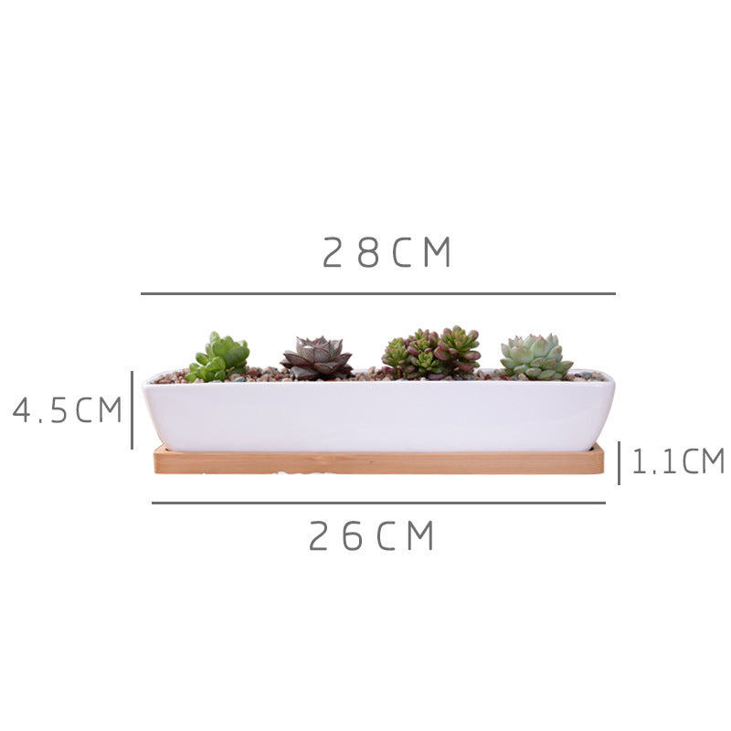 1 Set Minimalist Geometry White Ceramic Succulent Plant Pot Bonsai Planter Porcelain Flower Pot Home Decor (1 Pot + 1 Stand)