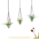 Air Plant Holder Hanging Planter Pot Geometric Himmeli for Tillandsia Airplants Indoor Decoration with Chains, Black