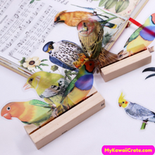 Colorful Bird Stickers