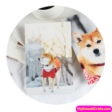 Japanese Dog Post Cards
