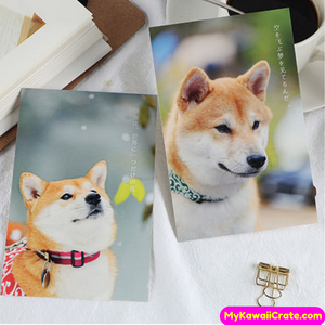 Cute Dogs Postcards