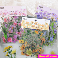 Garden Flowers Stickers