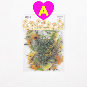 40 Pc Pack Floral Breeze Transparent Stickers ~ Spring Flowers Tulip Rose Daisy Pansy Stickers